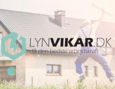 Lyn Vikar